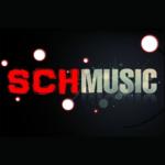 Рисунок профиля (Schmusic)